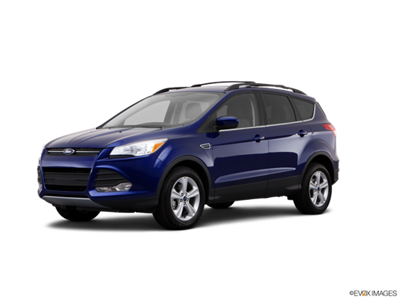 2013 Ford Escape SE  Photo