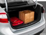 Trunk props photo